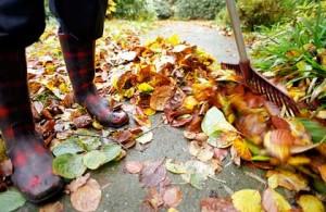 Plano Homes: Fall Maintenance Tips