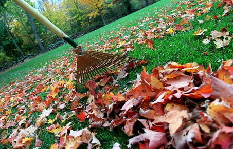 Plano Homes: Fall Maintenance for your Lawn